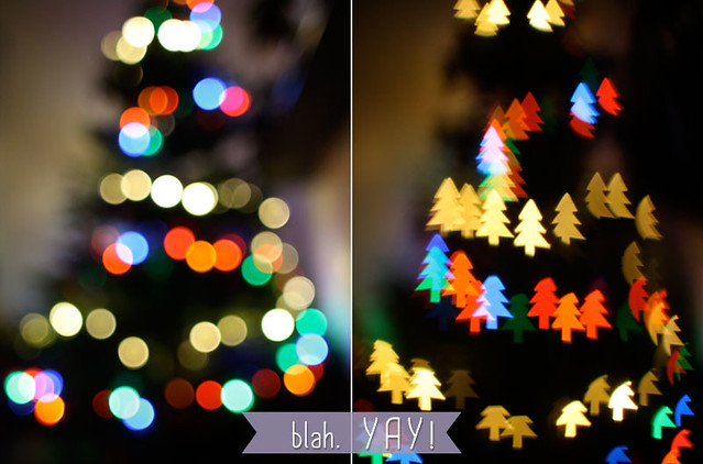 diy bokeh filters, the friendly fox