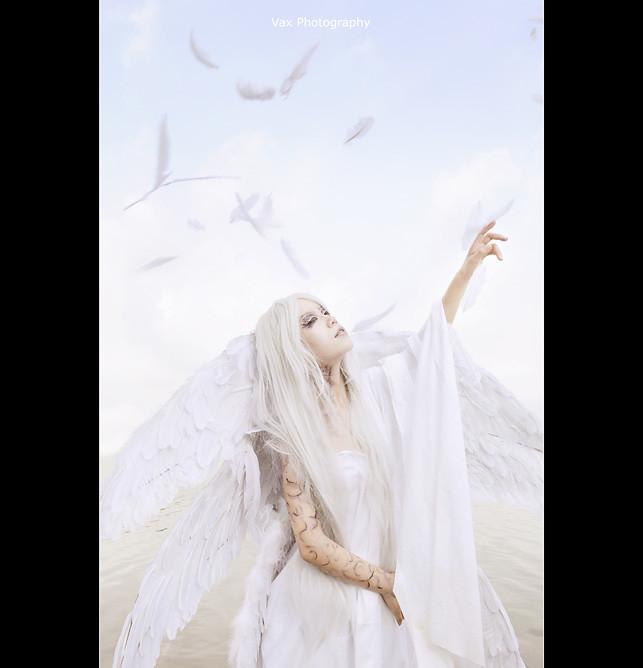 angel-sanc-003