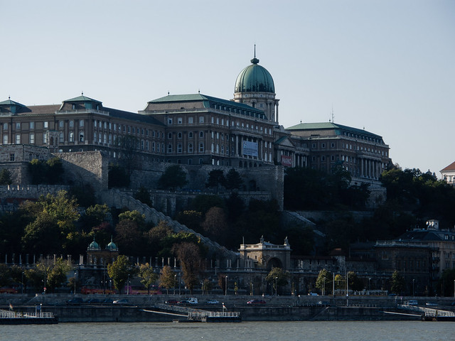 The Buda Palace and Castle