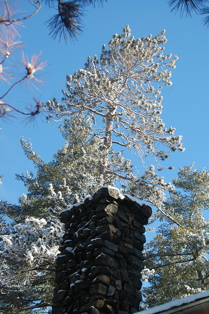 Adirondack chimney