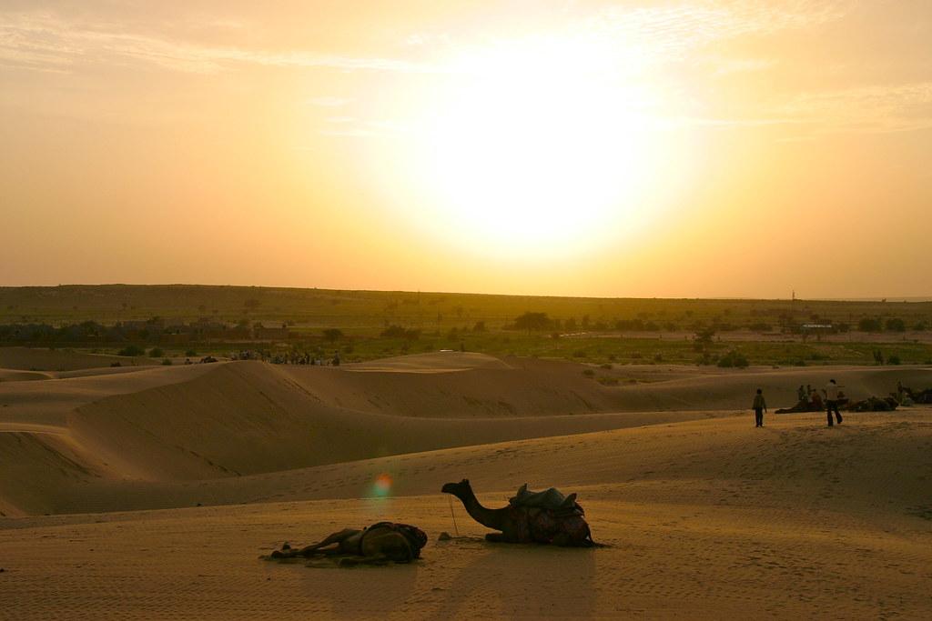 Sunset - Desert Jaisalmer