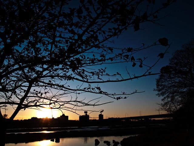 GRD4 Snap - Tamagawa