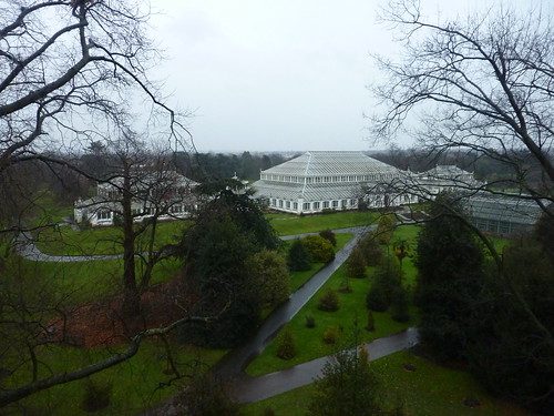 View of the Temperate House