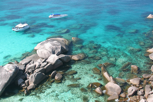 coral and clear blue water at #8