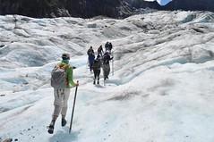 Caminant pel gel