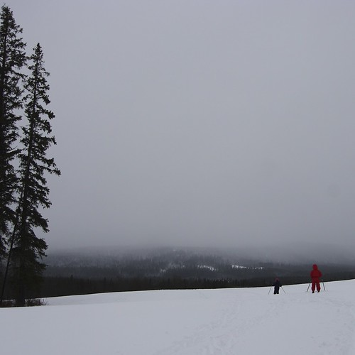 Ski with Ari
