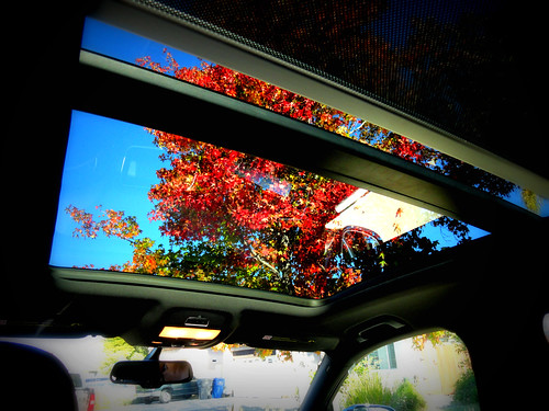 2011 Audi Q5 Panoramic Sunroof