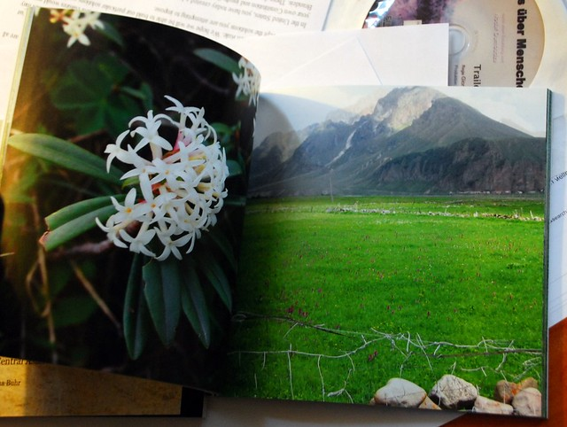 Flora im Kaukasus Buch