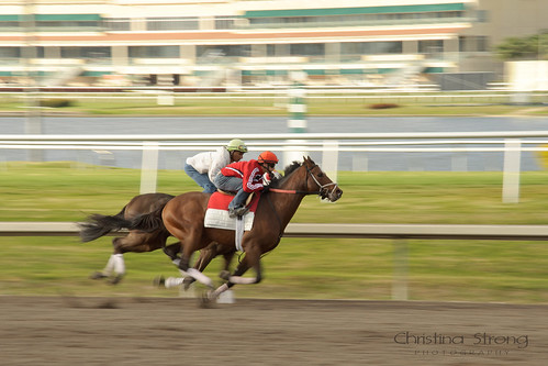 Motion Blur in Horse Racing