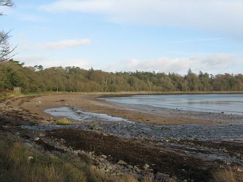 seaweed beach river landscape bay scotland sand woods terminal foreshore beautifulbay scottishborders instantfave garlieston lunaphoto riggbay cruggletonbay loversoflandscapes