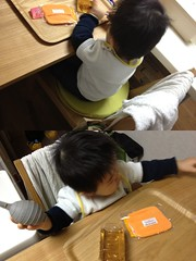 大人の椅子に座るとらちゃん(2012/1/22)