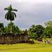 Panama City 713