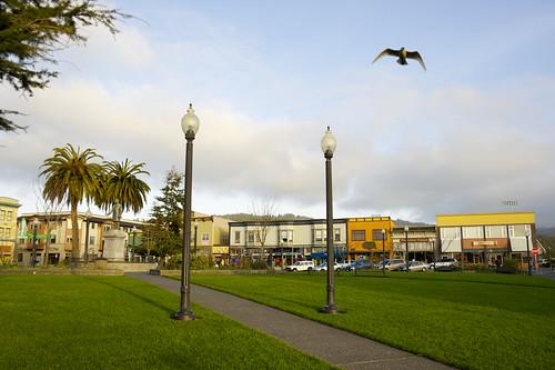 california college northerncalifornia campus humboldt community university state seagull arcata humboldtcounty csu arcataplaza humboldtstateuniversity stok012312003