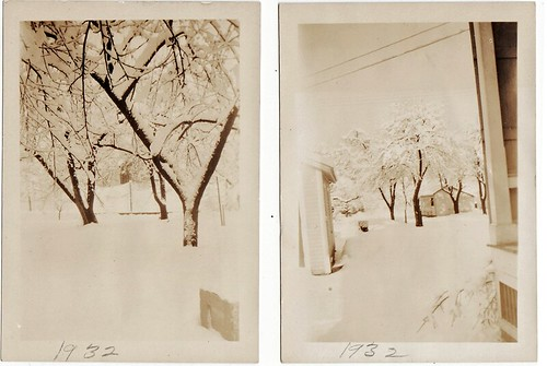 1932 winter trees