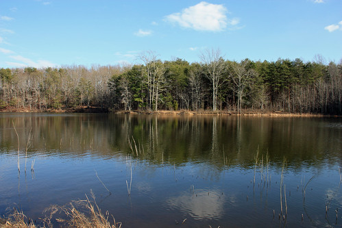 Lake at Crowders