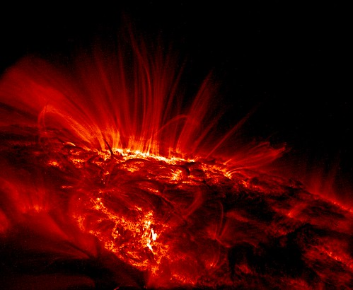 Sunspot Loops in Ultraviolet