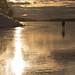 2012-02-01 Morgontur på Mälaren