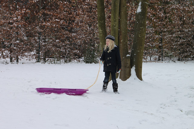 Snow 11