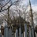 Branches ,Grave Stones and Eyüp Sultan Camii  by rifatovic