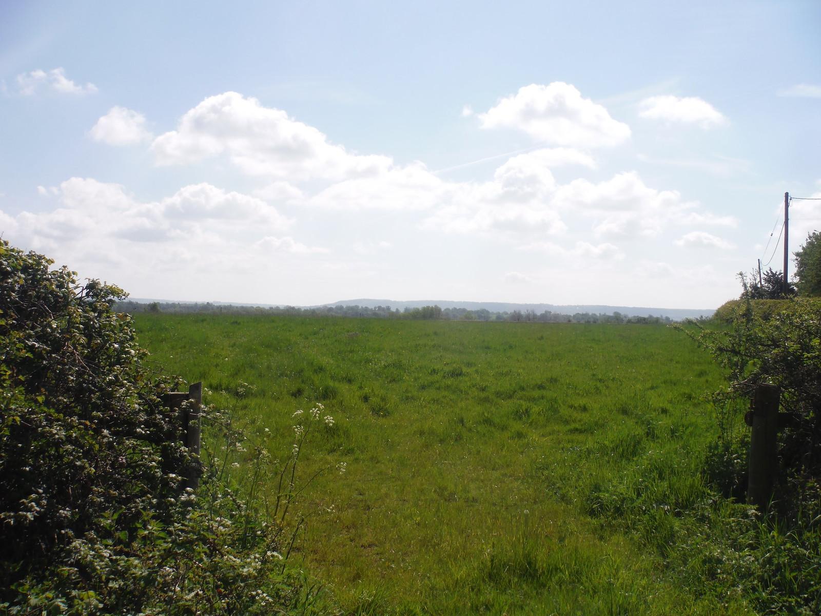 Chiltern Views from Lane in Moreton SWC Walk 190 - Thame Circular