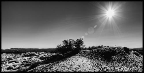 park sunset sun art nature forest landscape utah sand desert state outdoor dunes fine flare wilderness coralpink