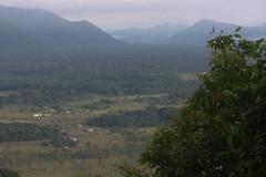 Guyana-9524