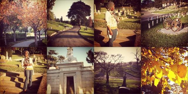 Mountain View Cemetery 2