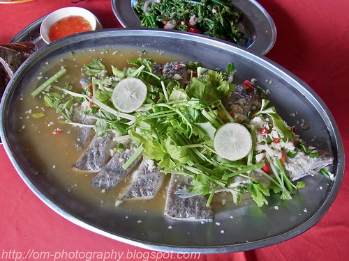 yee wen thai food, kepong baru, lime and garlic steamed siakap sea bass R0016058 copy