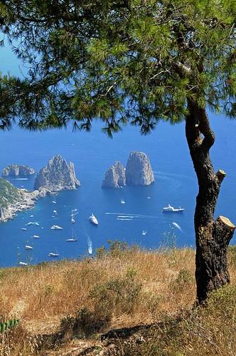 Capri 0811 2249