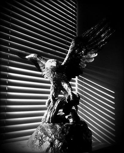 179/365- Eagle's Corner by elineart