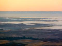 Fog from Steptoe Butte