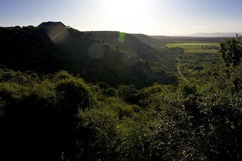 africa southafrica addo hotel nationalpark terrace lodge veranda chalet addonationalpark cruisair hitgeheim