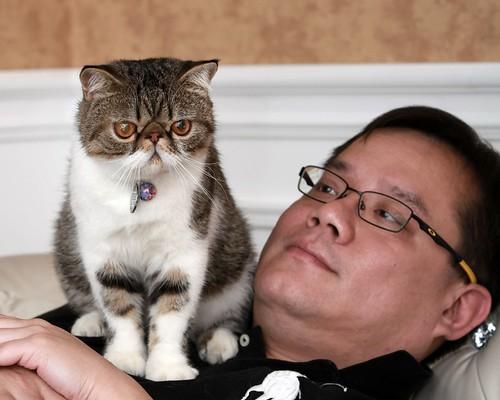 il terzo gatto della coppia insieme a Denniz