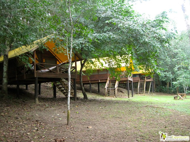 Quick Travel Guide to Belize - macal river camp glamping