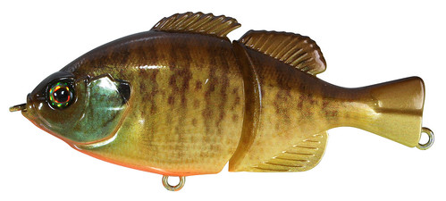 RT Bluegill GIRON