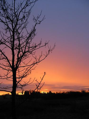 sunrise bedfordshire herts stotfold