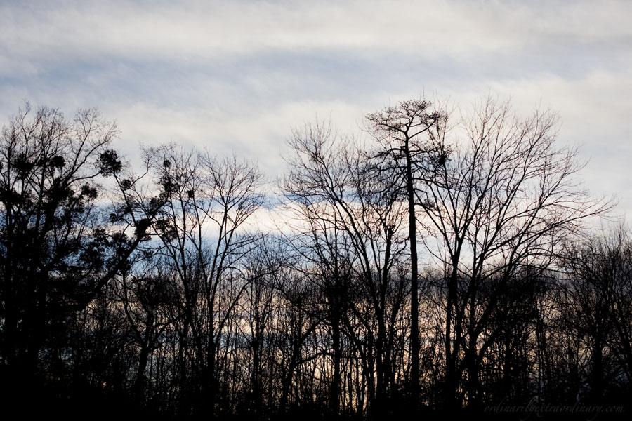 Dec212011_0047