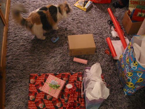 Cat + Wrap