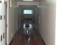 廊下とらちゃん(2011/12/30)
