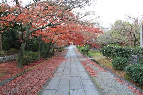 20111210_11_kyoto_burari