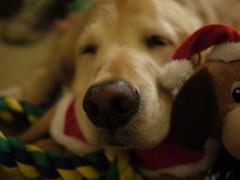 Sleepy Keely