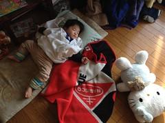 お昼寝とらちゃん (2012/1/1)