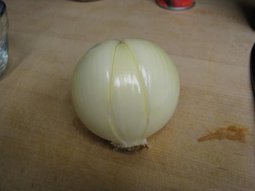 lobed onion