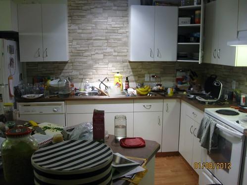Nita's blog Jan 2012 206