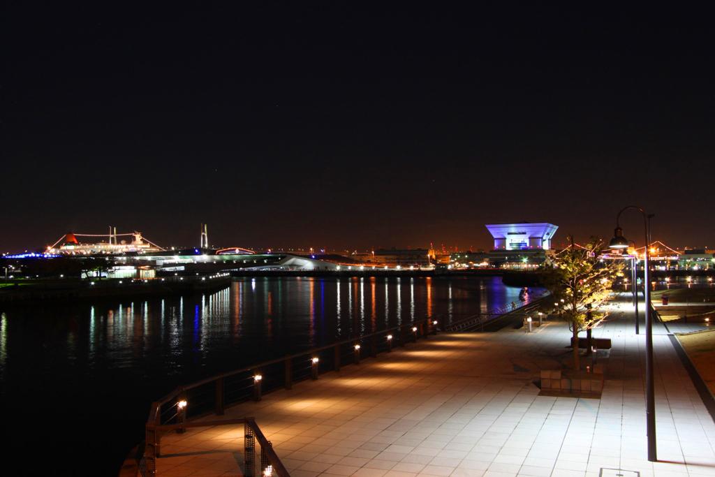 Yokohama Night Photo (8)