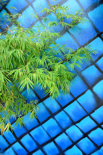 Bamboo and mural grid