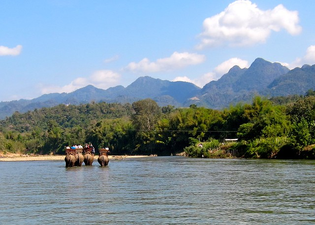 A day with the elephants, Luang Prabang, Laos