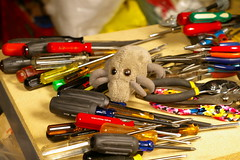 Dust Mite & tool mess