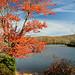 Price Lake, along Blue Ridge Parkway, NC