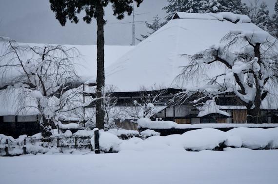 20120115-_DSC2795BukeYashiki